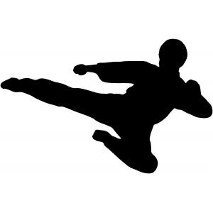 Bojové športy 1