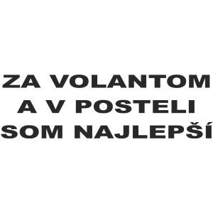 2488f965d1c Vtipné nápisy 17 - Auto-samolepky.sk