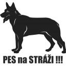 Pes 9