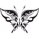 Motýľ 6