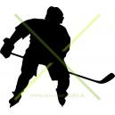 Hokej 8